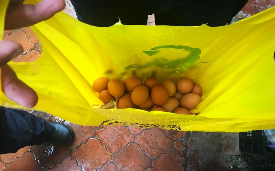 (+FOTOS) Huevos decomisados en la Asambleapodrían ser para tirarlos a diputados