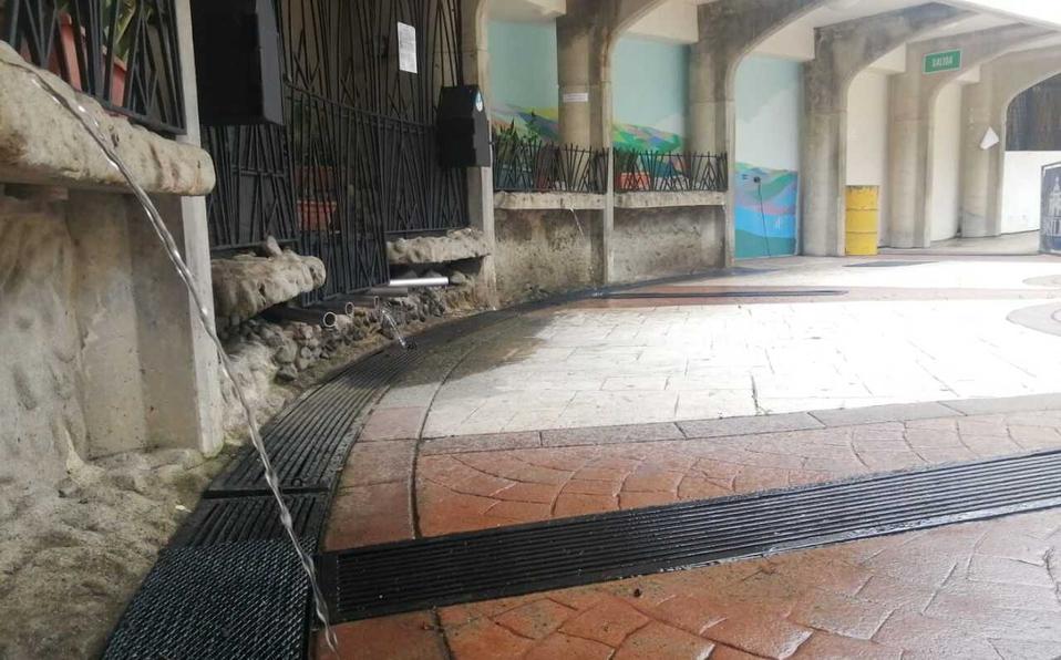 La Basílica de Los Ángeles ofrece a los fieles a la aplicación Mi Negrita. (Foto: Basílica de los Ángeles)