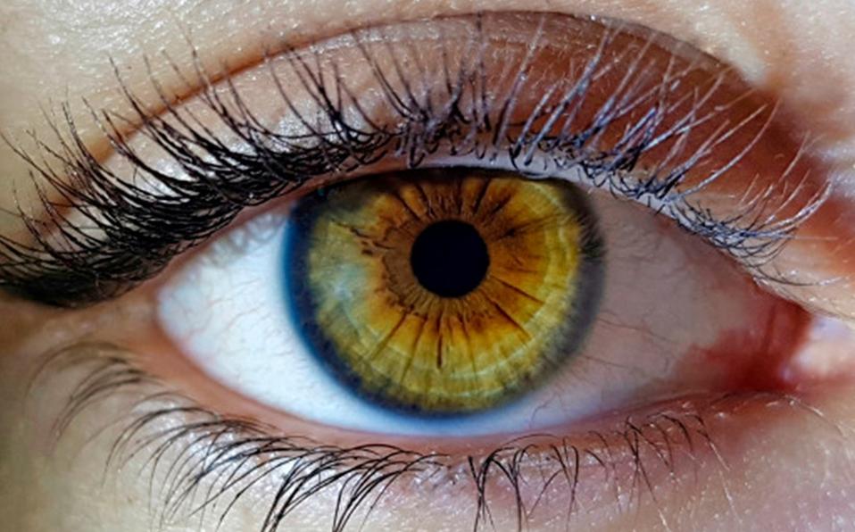 Los pequeños destellos que vemos pueden ser mas que una ilusión óptica. (Foto: Freepik)